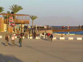 Assalah reef - Sunsplash Divers Dahab Egypt