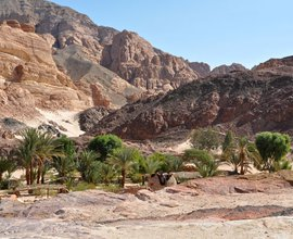 White canyon safari - Sunsplash Divers Dahab Egypt