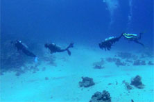 Ricks reef - Sunsplash Divers Dahab Egypt